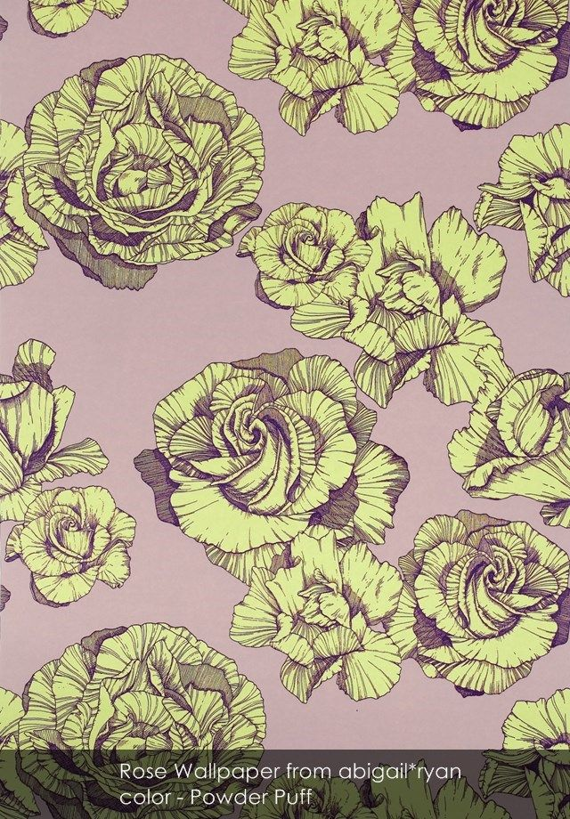 Rose wallpaper from abigail*ryan in Powder Puff
