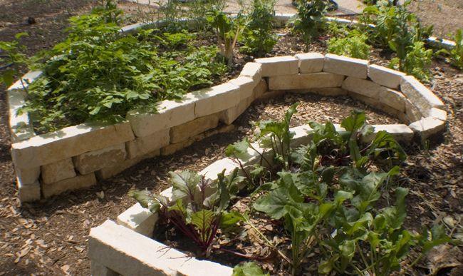 17 best images about keyhole garden on pinterest gardens for Keyhole garden designs