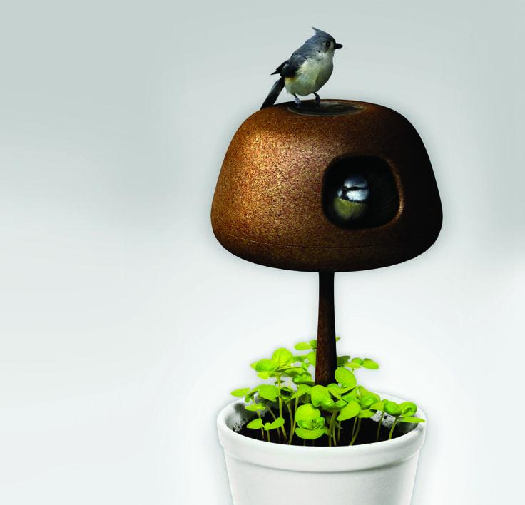 DSKIC - Birdhouse by Floorianne Rousse