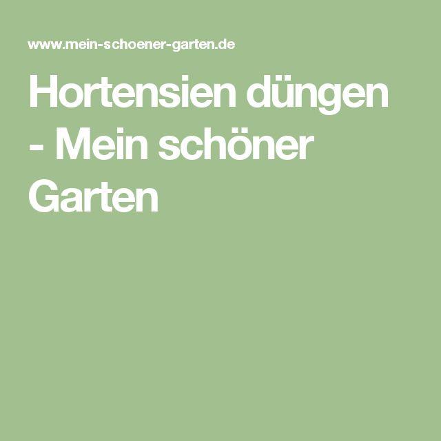 Hortensien Düngen