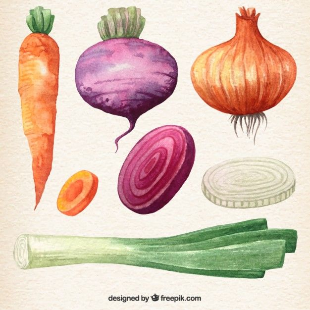 Coleta de vegetais Aguarela                                                                                                                                                                                 Mais