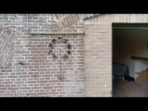 150818 CAROLINE PEETERS in fort Altena - YouTube