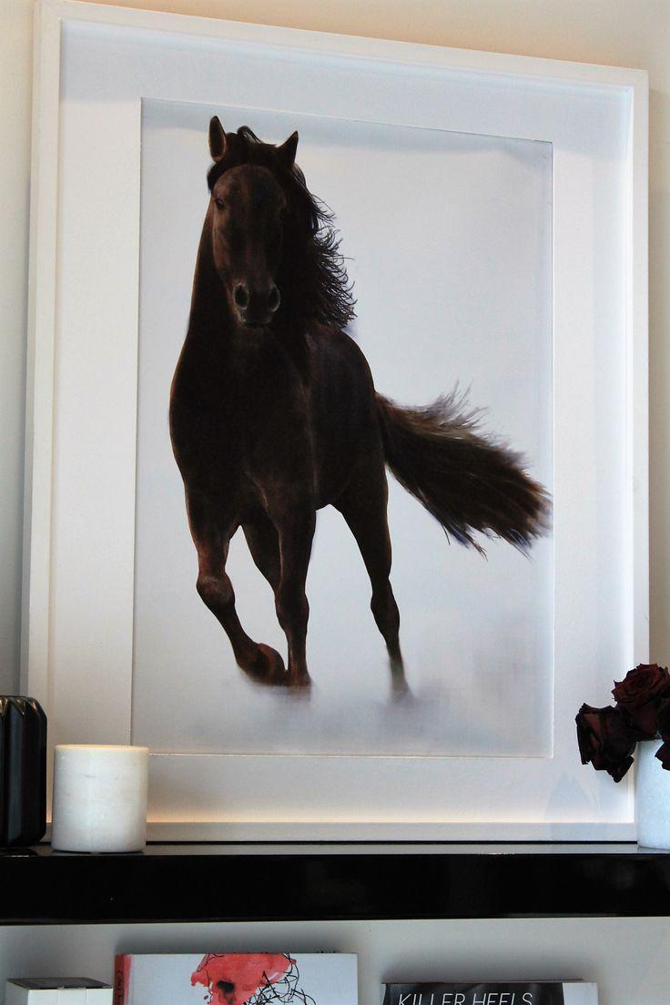 Gorgeous Kmart horse print