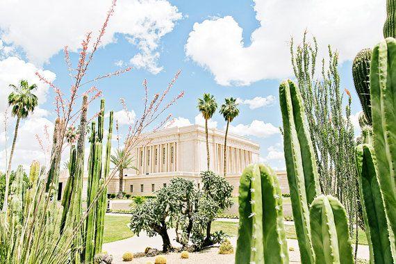 Mesa Arizona Temple Cactus by BrittneyGurrPhoto on Etsy