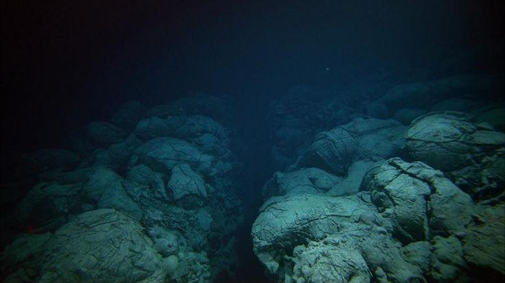 La fosse océanique est profonde de plus de 11km