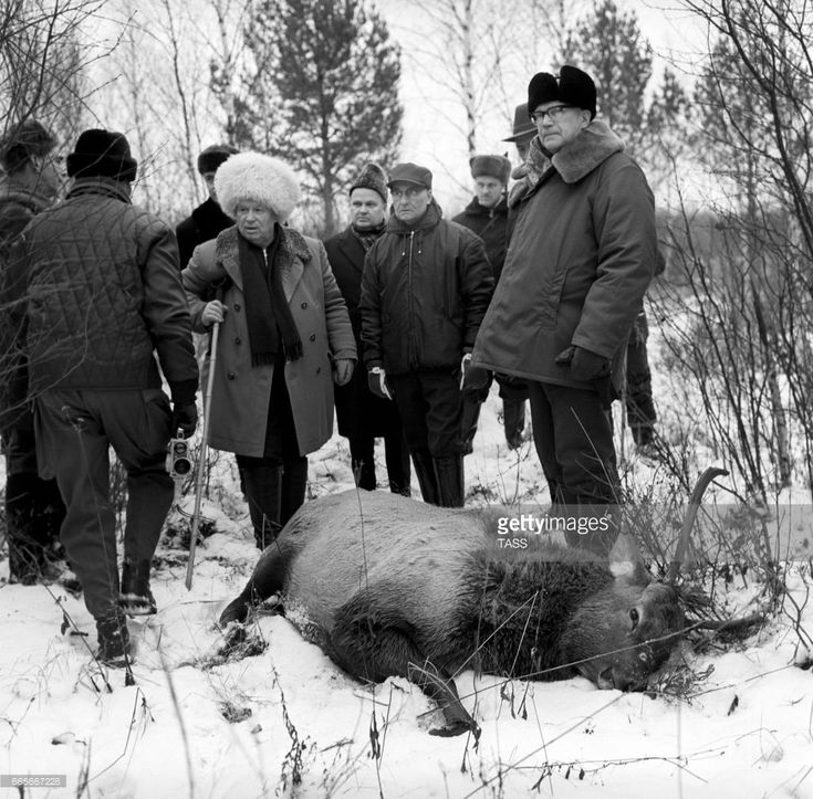 Moscow region. USSR. First Secretary of the Communist Party of the Soviet Union Nikita Khrushchev (C) and President of Finland Urho Kaleva Kekkonen (R) hunting at the Zavidovo residence.