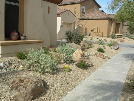 Anozira landscape professional landscape hardscape for Professional landscaping ideas