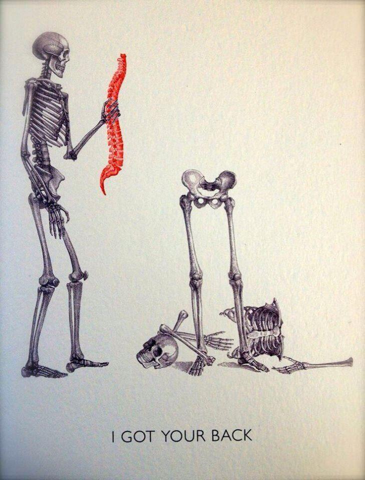 I Got Your Back Medical Jokes Medical Humor Chiropractic Humor