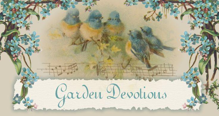 Blue bird vintage graphics vintage postcards