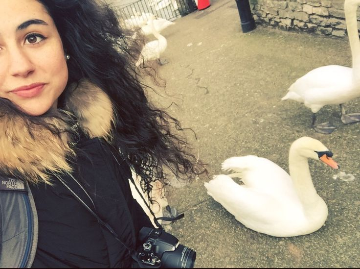 Photo with a swan of the Queen (Windsor)