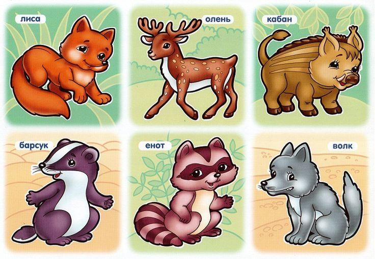 картинки животных с названиями для самых маленьких этого хочет