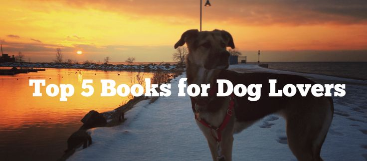 Top 5 Must Reads for Dog Lovers