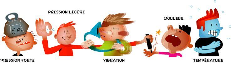 Le toucher, sur le bout des doigts - Les oreilles servent à entendre, les yeux à voir, le nez à sentir mais pour toucher on utilise la peau de tout notre corps !