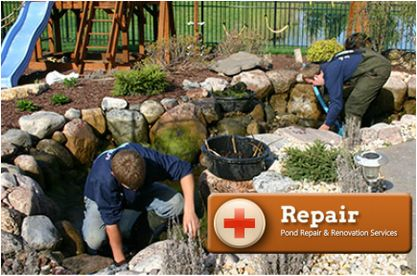 10 best pond repair renovation in rochester ny by acorn for Koi pond maintenance service