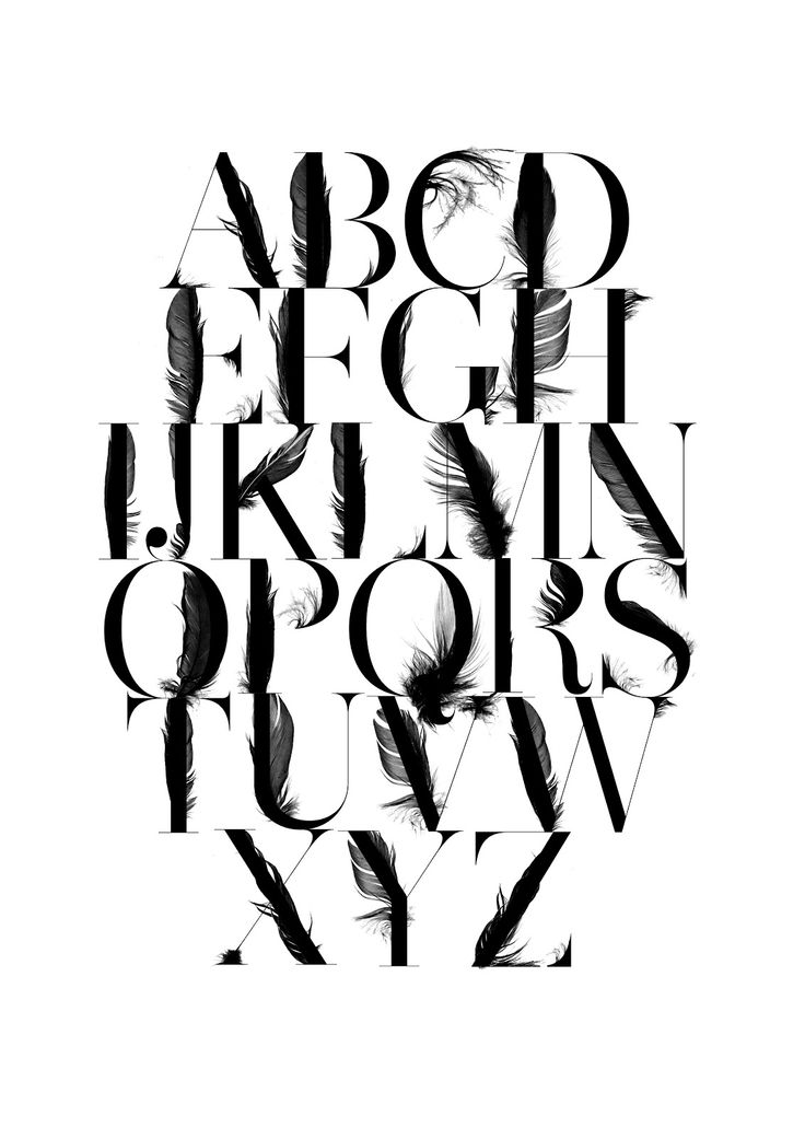 15 best typography feather images on pinterest feather