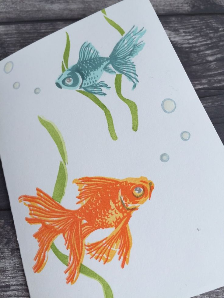 20 best hero arts layering goldfish images on pinterest for Impress cards and crafts