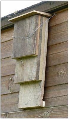 DIY bat box #homesfornature