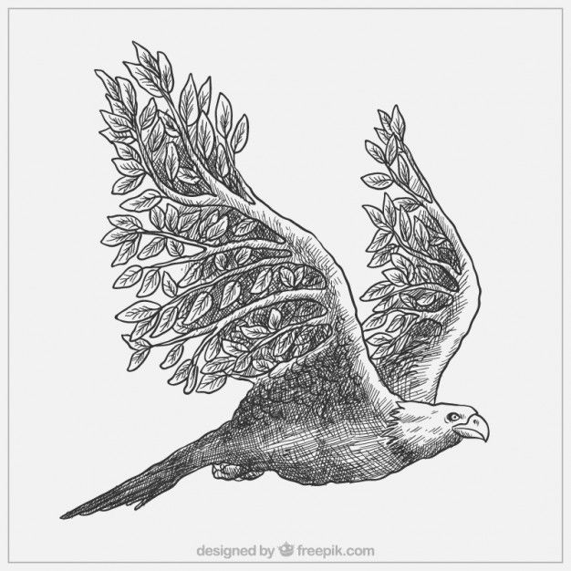 Величественный рисованной орла с ветвями Бесплатные векторы