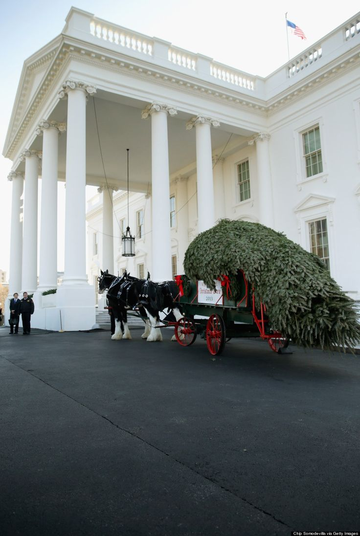 White house christmas ornament free shipping - 2 Michelle Obama Daughters Receive White House Christmas Tree Huffpost