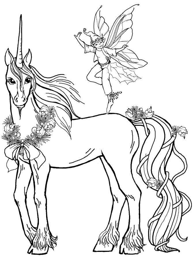 Unicornio y duende con alas para colorear hadas