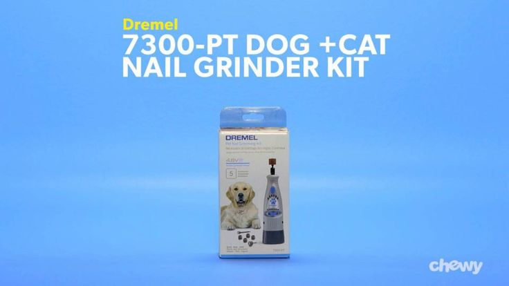 Dremel 7300-PT Dog & Cat Nail Grinder Kit – Chewy.com – PETS