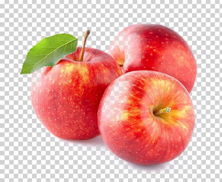 Apple Juice Fruit Seed Png Apple Apple Fruit Apple Logo Apples Apple Tree Apple Background Apples Photography Apple Picture