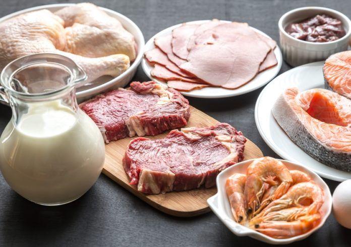 Ukázkový jídelníček: proteinová dieta
