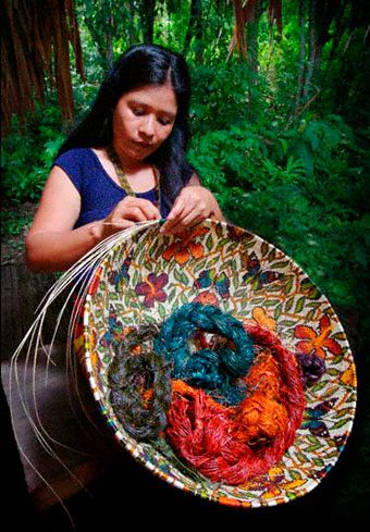 RainforestBaskets | Museum Quality Woven Masterwork Baskets from the Wounaan of Panama