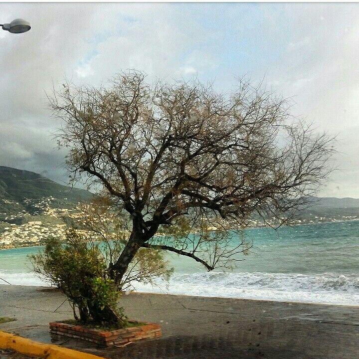 Kalamata.Greece.Peloponnese