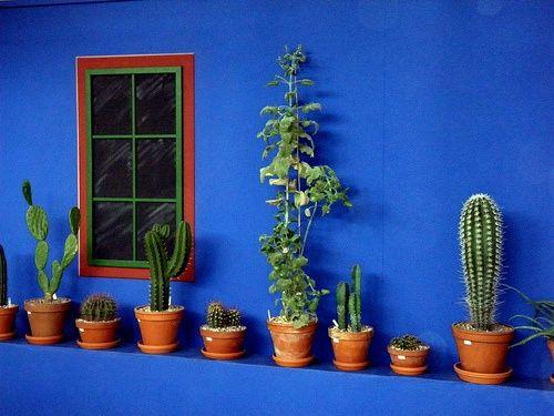 FridaKahlo_PlantsOnBlue