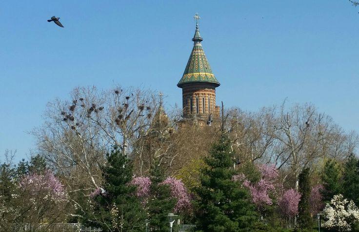 Spring in Timisoara, Romania