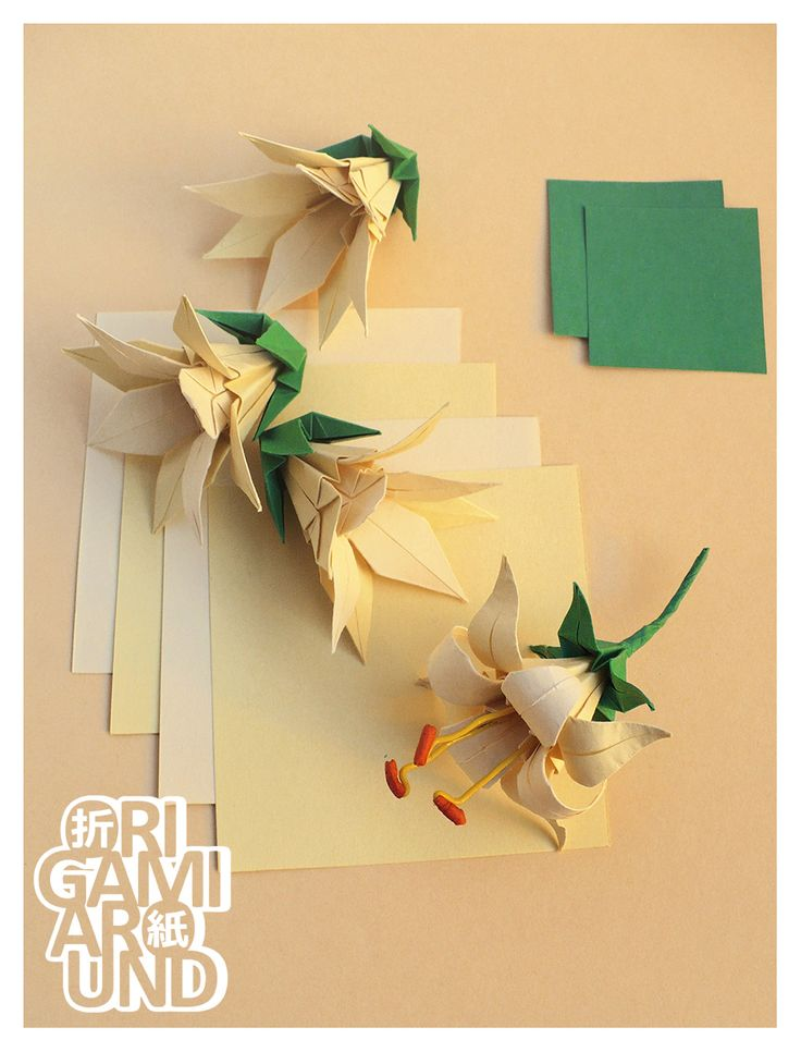 Wow! Origami modular lily flowers - no instructions