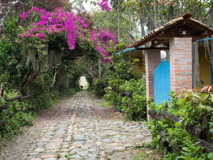 Jardín, a beautiful small town of just a few streets in the region of Antioquia…