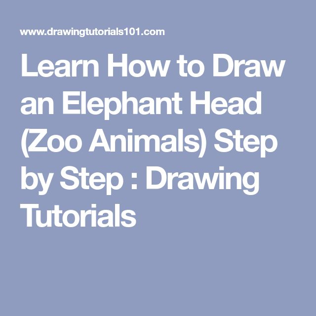 how to draw a easy elephant head