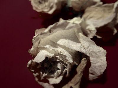 Suomi Finland matkablogi: Joulun koristeita: kuivatut ruusut