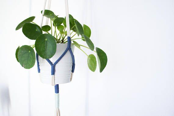 Pomelo Plant Hanger Blues
