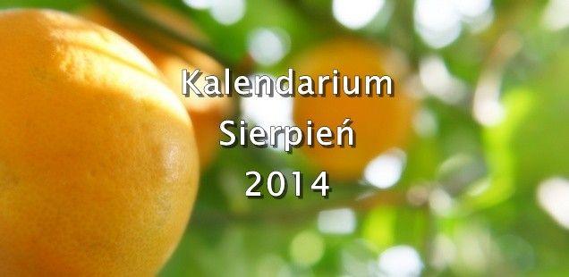 Kalendarium wydarzeń kulturalnych – Sierpień 2014