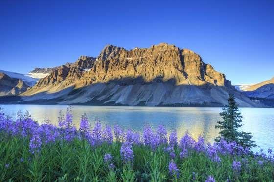 Las cumbres de las Montañas Rocosas de Canadá permanecen cubiertas de nieve gran parte del año, sin ... - John E. Marriott