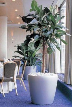 25 beste idee n over kunstplanten op pinterest - Decoratie kantoor ...