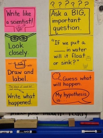 Best 25 Scientist Anchor Chart Ideas On Pinterest