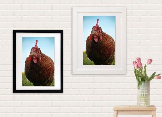 Chicken print chicken canvas. Spring home by SophieTakesPhotos