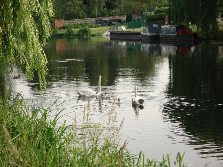 ...in Thrapston on the Nene