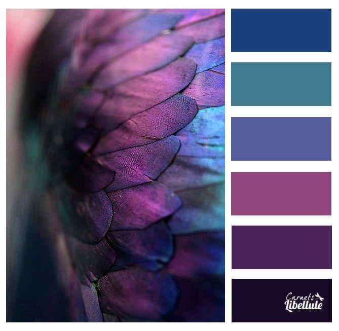 Purple Colour Scheme: 17 Best Ideas About Purple Color Combinations On Pinterest
