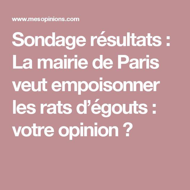 Sondage résultats : La mairie de Paris veut empoisonner les rats d'égouts : votre opinion ?