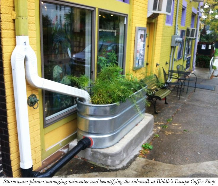 """Stormwater planter managing rainwater & beautifying the sidewalk at Biddle's Escape Coffee Shop"""