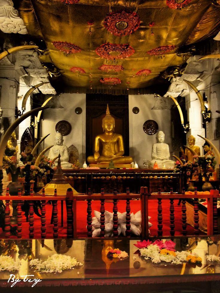 Kandy | මහනුවර | கண்டி ve městě Central