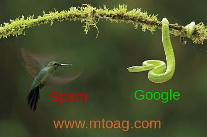 No spammers will allow in website promotion. http://www.mtoag.com/
