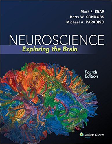 Neuroscience: Exploring the Brain 4th Edition Pdf Download For Free - By Bear,Mark F Bear Neuroscience: Exploring the Brain