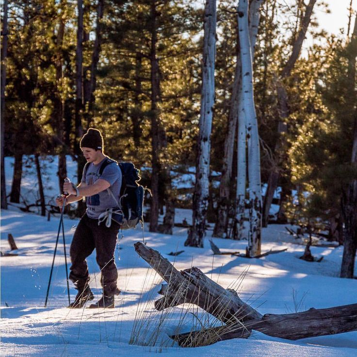 いいね!35件、コメント1件 ― Hillsound®さん(@hillsoundequipment)のInstagramアカウント: 「Making the most of fresh snow and last light among the aspens in Arizona's high country.  Photo:…」