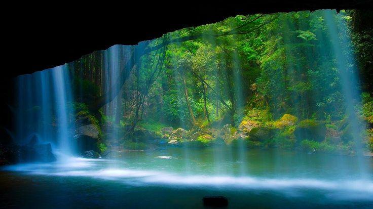 11.トンネル・オブ・ラブ(ウクライナ) - 「世界のスゴイ絶景」30ヶ所。あり得ないほど美しい! - Find Travel